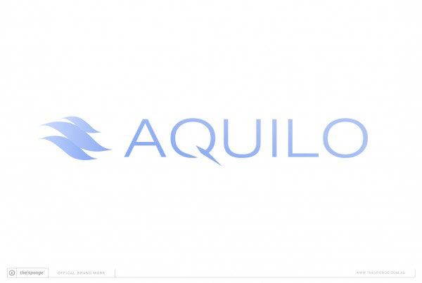 The Sponge Branding: Aquilo Brand Mark